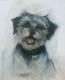 doggie (2)