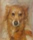 doggie (4)