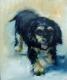 doggie (7)