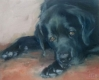 doggie (3)